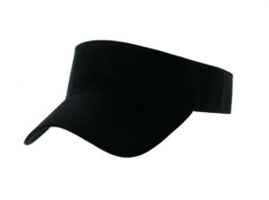 Sunvisor black